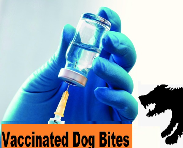vaccinated dogs don't hurt when bite